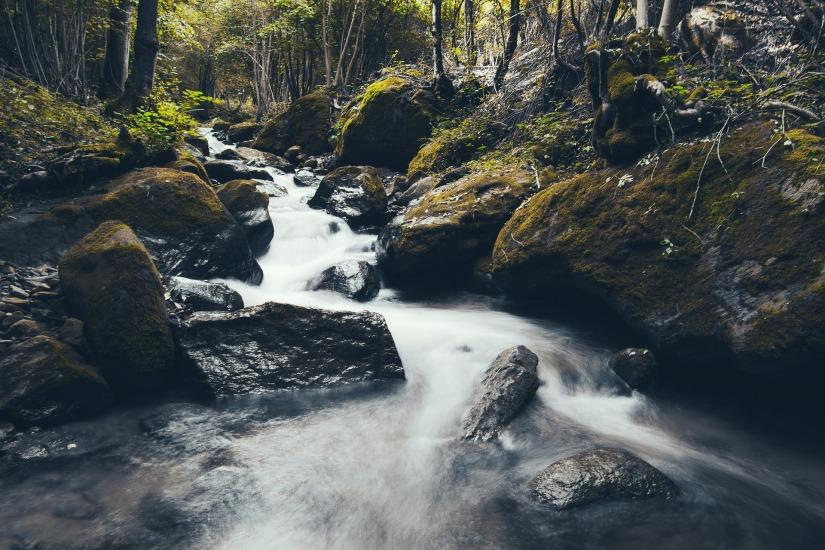 stream-438437_1920